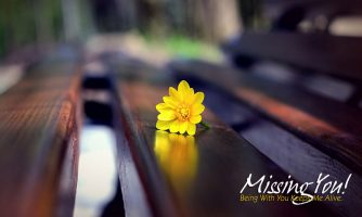 Heart Touching Missing You Status and Quotes for Whatsapp