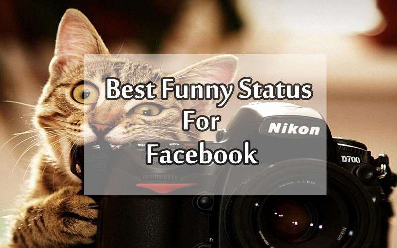 Funny Jokes for Facebook Status And One-liner Jokes