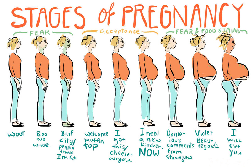 funny pregnancy status messages and quotes