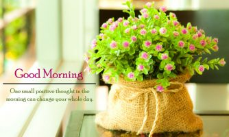 Top 50 Sweet Good Morning Quotes for Facebook in English