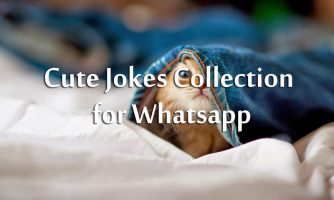 Best Jokes For Whatsapp Status to Make Others Laugh