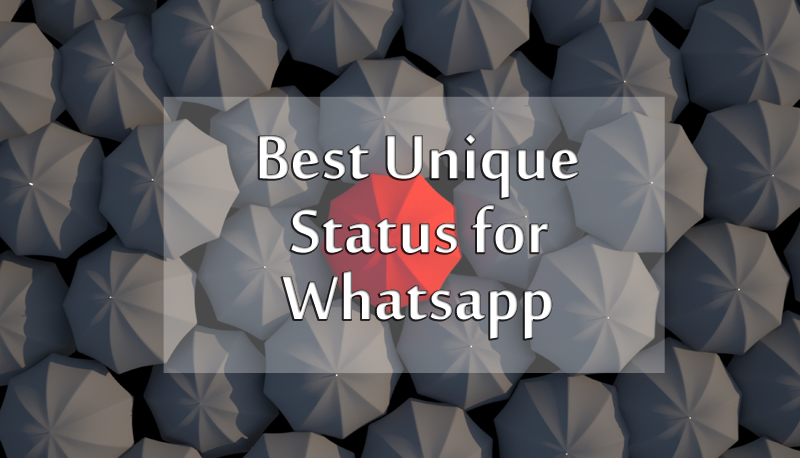 Best Unique Status For Whatsapp And Facebook Messages