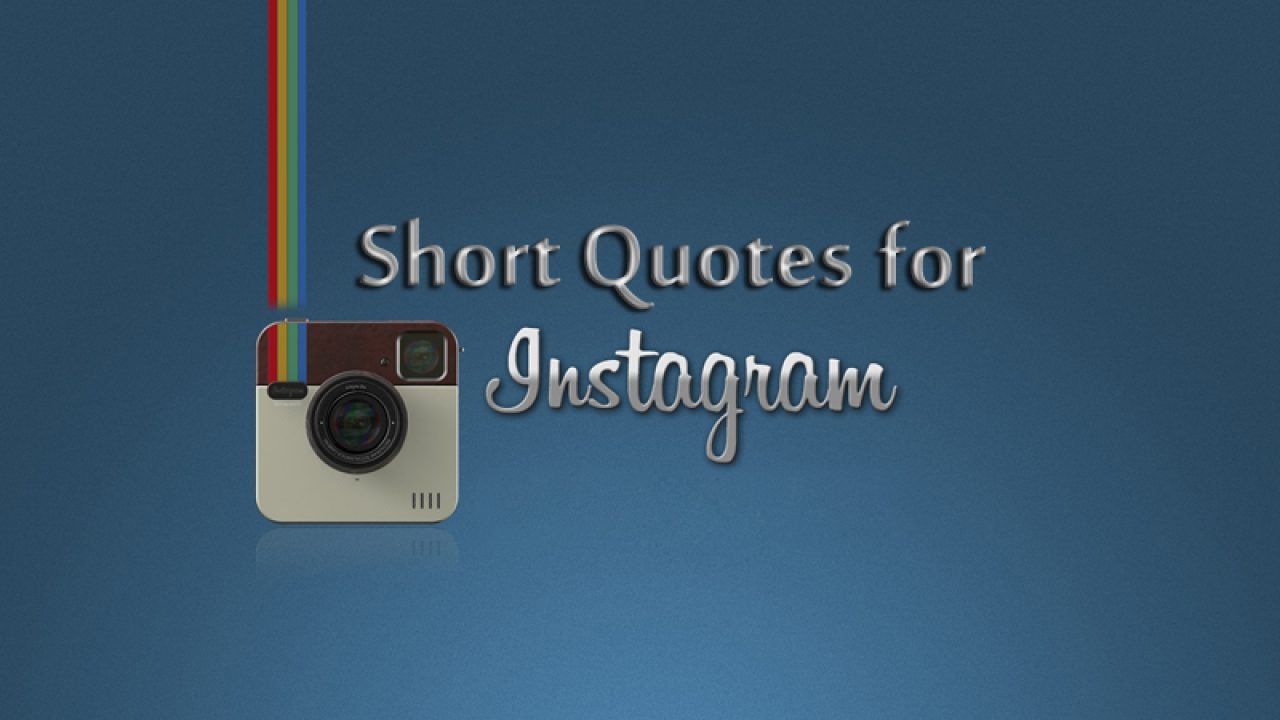 365 Instagram Bio Quotes Best Instagram Bio Status