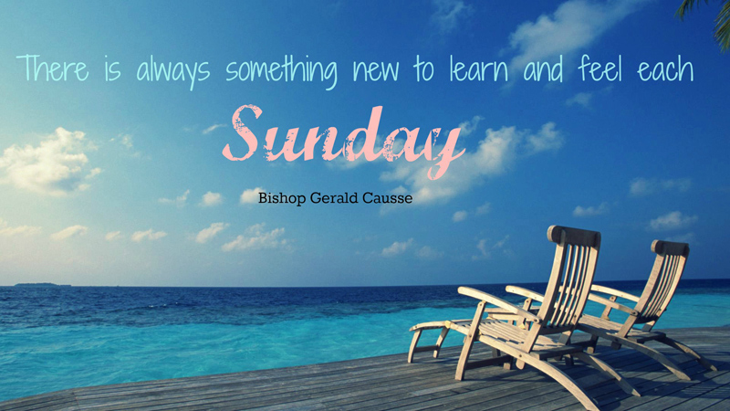 Funny Sunday Status Short Sunday Quotes Enjoy Happy Sunday