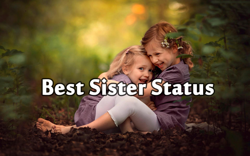 Status For Sister Show Your Love To Your Sister