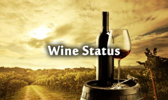 Wine Status and Short Wine Quotes – Funny Wine Captions