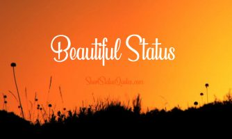Beautiful Status, Captions & Short Quotes About Beauty