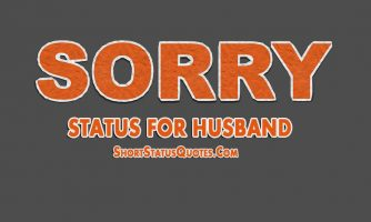 Sorry Status for Husband – I Am Sorry Messages for Husband