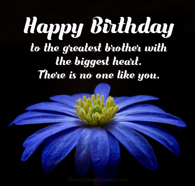 Birthday Status For Brother - Happy B'day Wishes & Messages