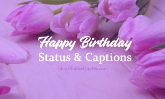 Birthday Status & Birthday Photo Captions for Any Relation