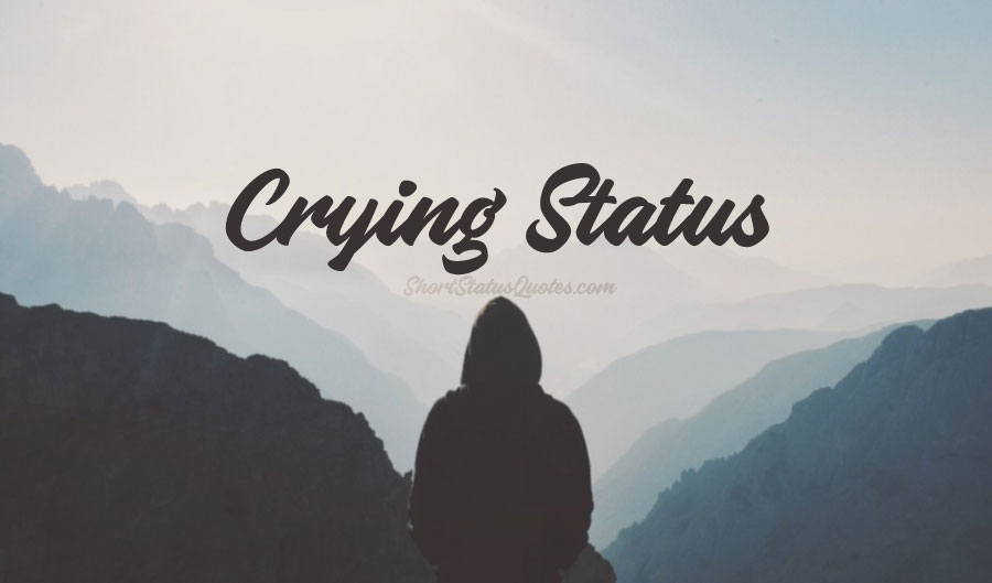 135 Sad Crying Status Crying Captions Quotes Amp Messages