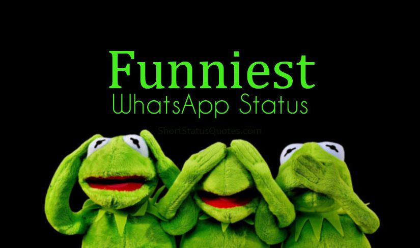 Funniest WhatsApp Status - Short & Funny Quotes for WhatsApp