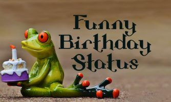 Funny Birthday Status and Captions