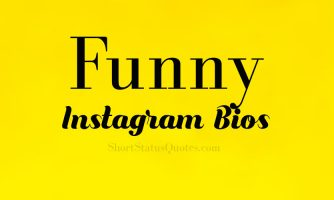 100+ Funny Instagram Bios – Witty and Funny Insta Bio Ideas