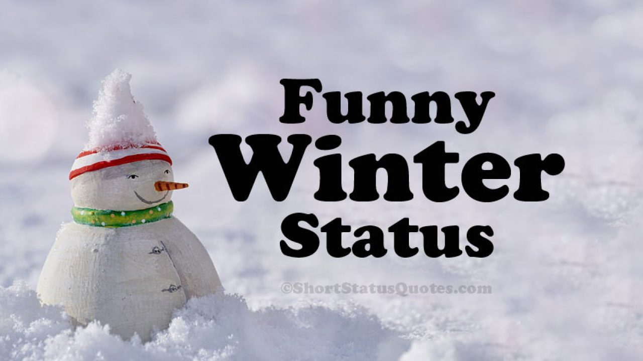 65 Funny Winter Status Captions Funny Winter Quotes