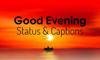 Status Captions And Quotes For Facebook Whatsapp And Instagram