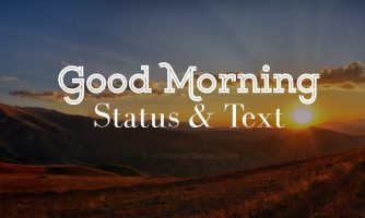 200+ Good Morning Status : Best Morning Captions and Texts