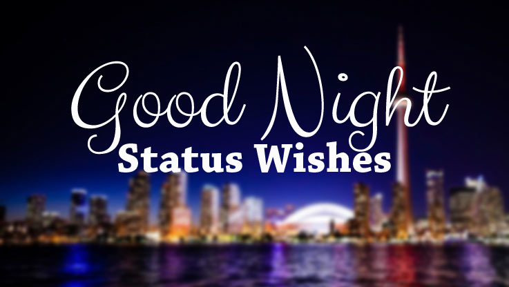 Good Night Status Wishes