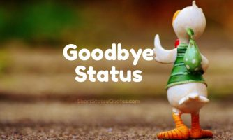 Goodbye Status, Captions, Quotes & Goodbye Text Messages