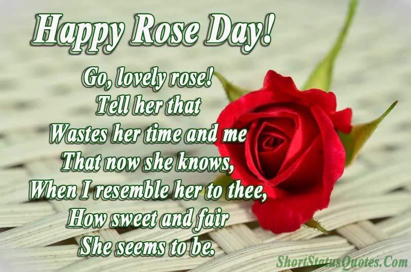 Rose Day Status Happy Rose Day Wishes Messages Quotes