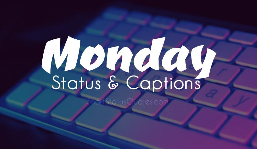 Monday Status & Monday Captions for Your New Week Motivation