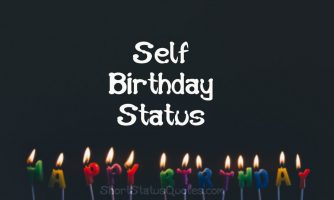My Birthday Status Messages and Funny Captions for Self Birthday