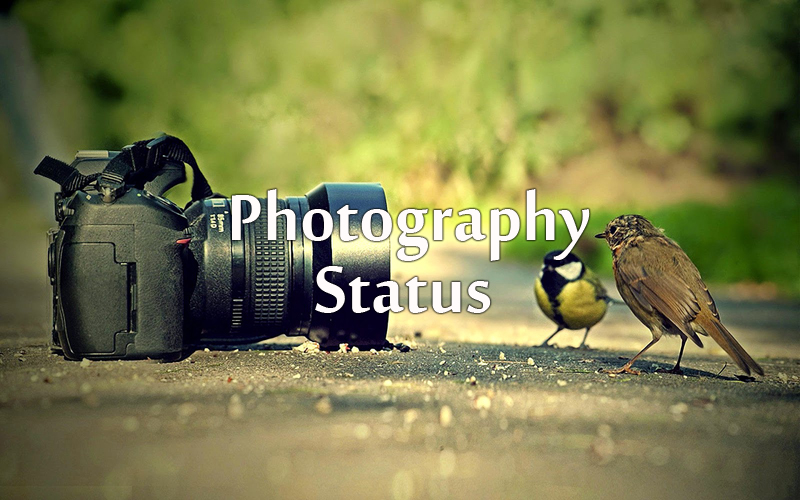 Photography Status Quotes For Facebook and Whatsapp