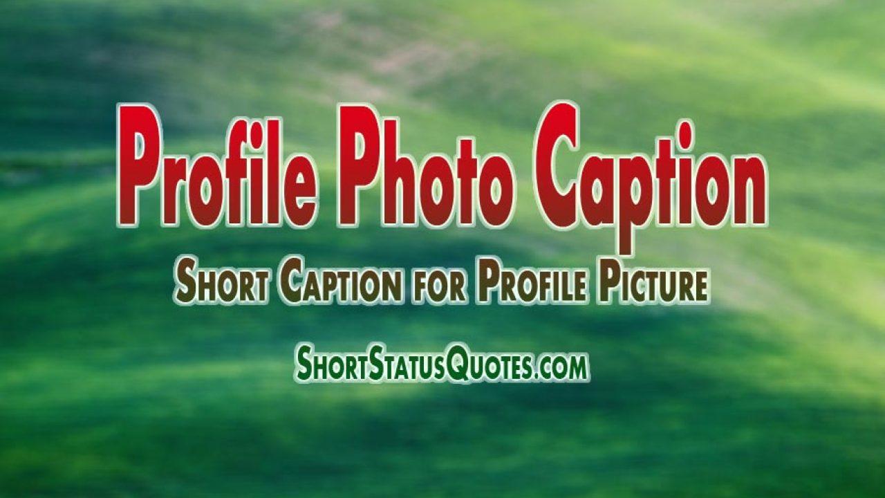 500 Best Caption For Profile Picture Profile Photo Caption