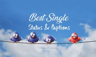 Single Status – Single Captions & Funny Single Quotes