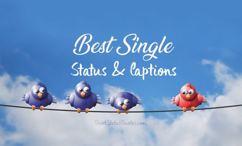 Single Status, Captions and Being Single Quotes