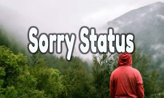 Sorry Status & Sorry Text Messages – Sweet, Cute & Heartfelt