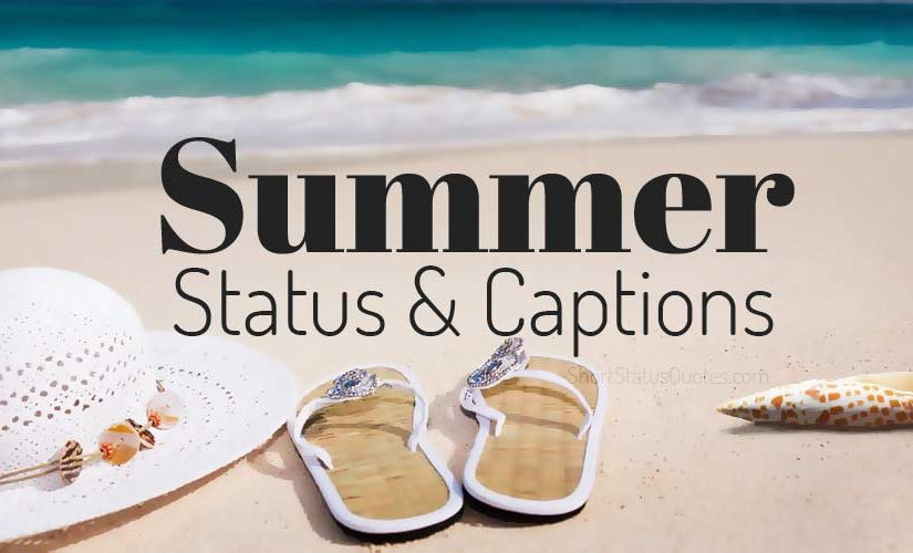 Summer Status - Summer Captions & Short Summer Quotes