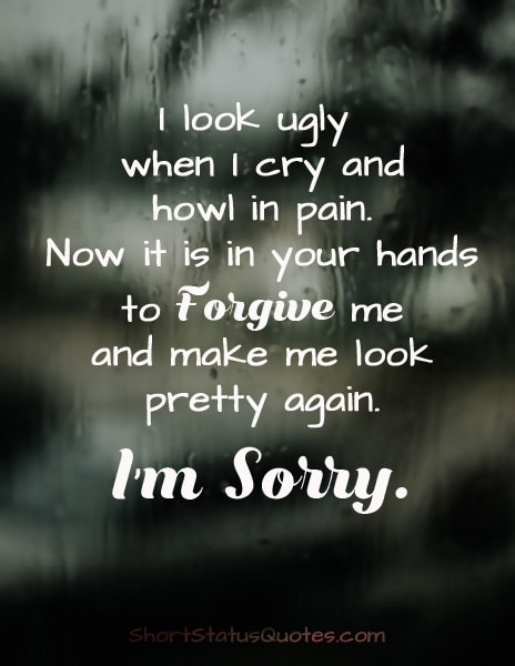 Sorry Status & Sorry Text Messages