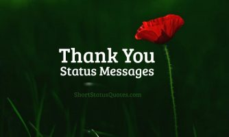 Thank You Status, Captions & Short Thank You Quotes