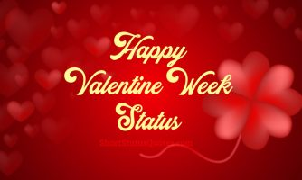 Valentine Week Status – Rose, Propose, Teddy, Promise, Hug & Kiss
