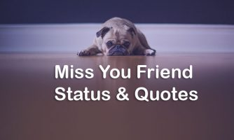 Missing Friend Status – I Miss My Best Friend Quotes