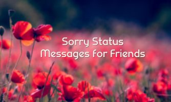 Sorry Status for Friend – I'm Sorry Messages and Captions for Friend