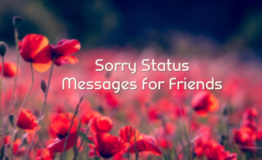 Sorry Status for Friend - I'm Sorry Messages and Captions